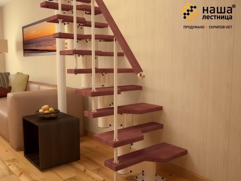 Наша лестница гусиный шаг